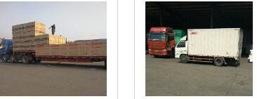 仁化县发至桑植托运公司专车服务