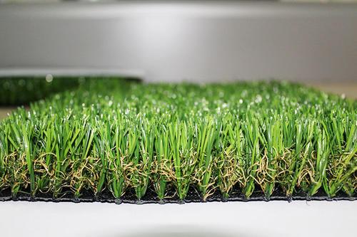 鹤壁足球场草坪