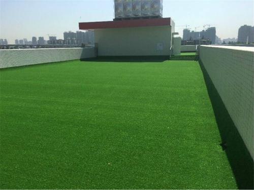 鹤壁门球场草坪