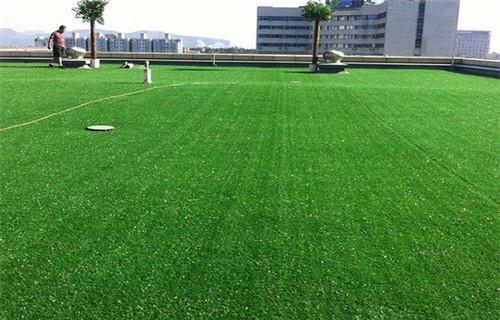济南硅pu球场  人工草坪