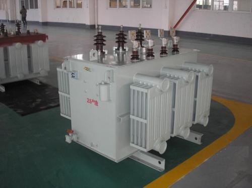 攀枝花500KVAS11油浸式电力变压器高质量服务