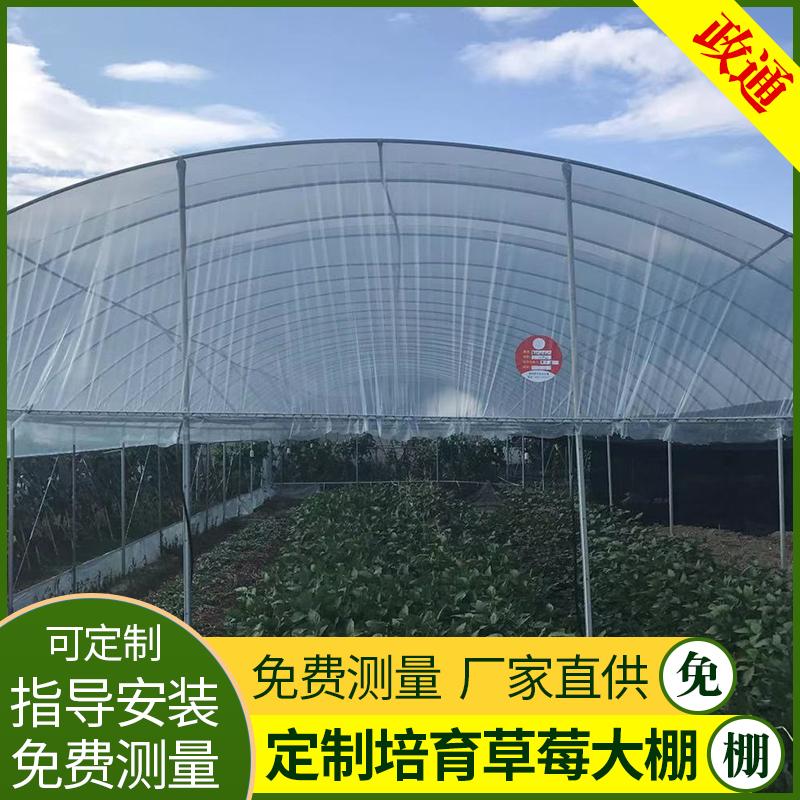 宁强果树温室大棚一亩地多少钱