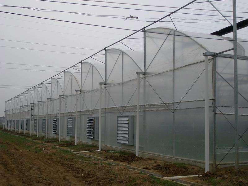 济南市大棚管厂温室大棚管