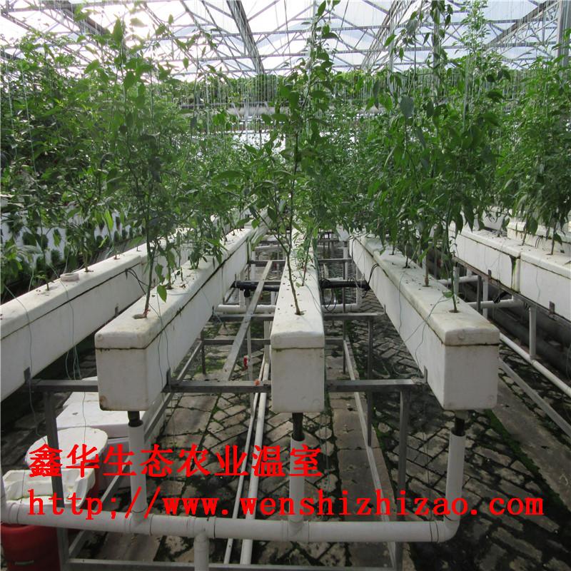 低价直销 方形槽式种植机 温室无土栽培设备 支持各地上门安装