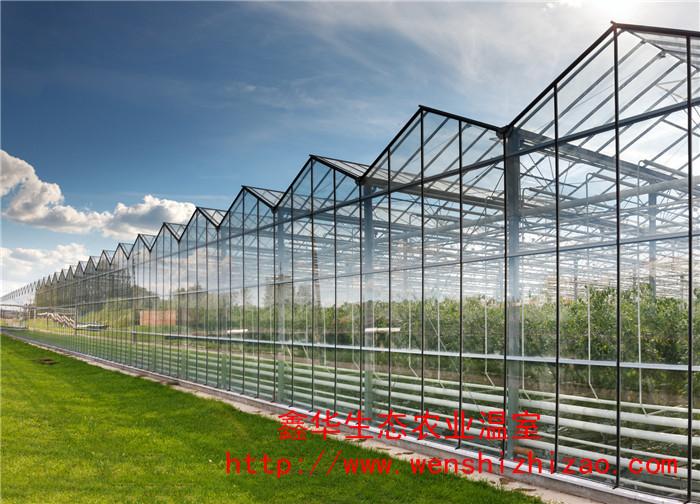 低价批发 日光玻璃温室 生态玻璃大棚 可上门指导安装