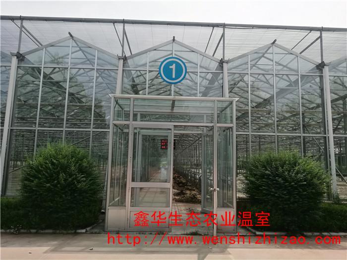 厂家现货直供 观光玻璃温室 规模种植农业大棚 品质保证