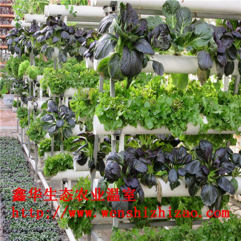 鑫华供应无土栽培设备 外贸无土栽培管道 蔬菜立体栽培槽