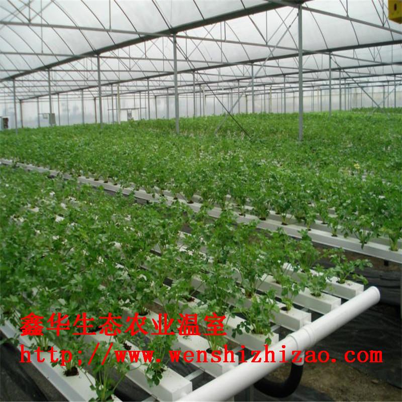 批量定制 智能水培种菜机 无土栽培设备 自动化水耕蔬菜盆