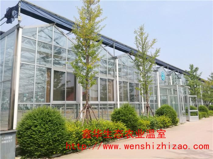 中空玻璃温室 种植玻璃温室生态大棚 寿光玻璃温室安装价格