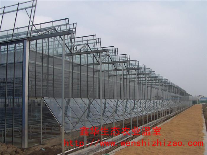 直销玻璃温室大棚 用于苗木种植温室 养殖大棚建造 质量保证