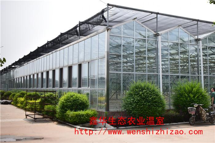 钢结构玻璃温室 智能温室 山东温室工程厂家 大量现货供应