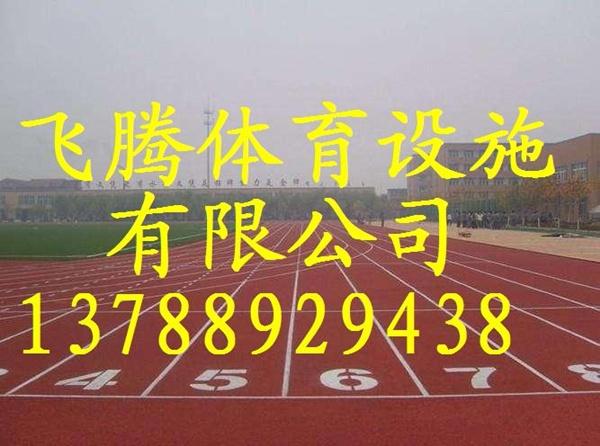 连云港塑胶跑道材料